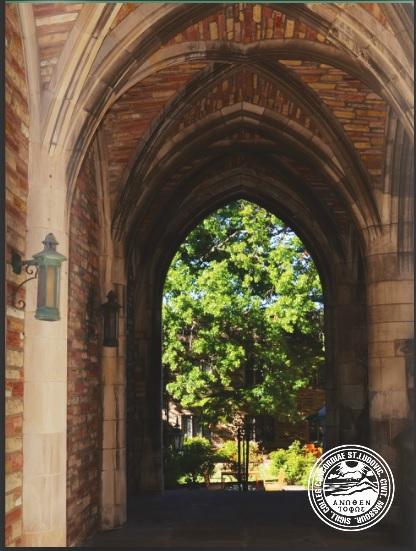 Blackboard Seminary Courses Concordia Seminary Saint Louis